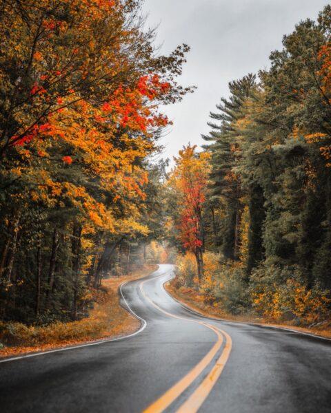 Maine-curvy-road-fall