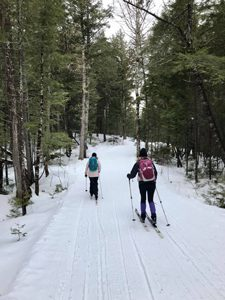 Cross-country skiing at the New England Outdoor Center in Millinocket.