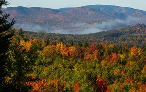 Bethel, Maine, foliage