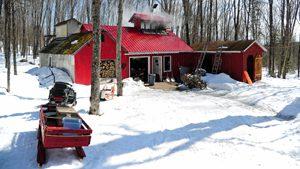 A Maine sugarhouse