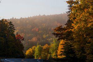 Foliage in the Rangeley, Maine, region