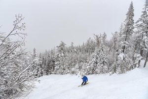 Maine downhill skiing in excellent conditions - click on the image above or link below to access more Maine winter images.